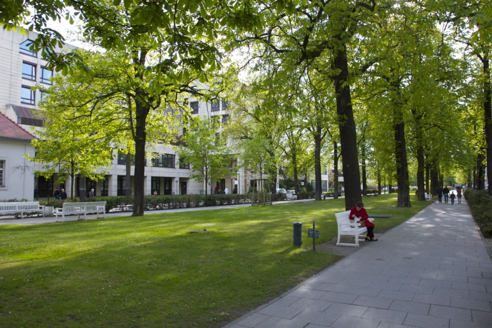 بروفيسور - بيتر فايكوتشي - مستشفى شاريتيه للطب الجامعي في برلين، مستشفى كامبوس فيرشوف - أرضية المستشفى