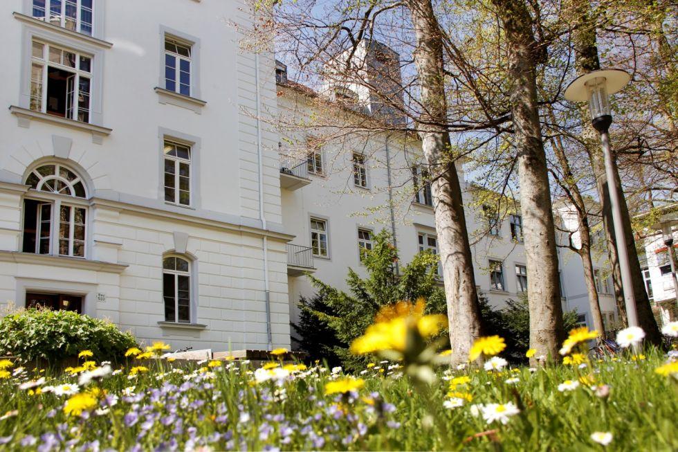 Prof. - Hans-Henning Eckstein - Klinikum rechts der Isar of the Technische Universitaet Muenchen
