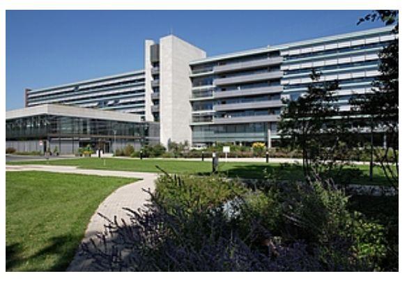 Dr. - Alexander Seelhoff - Vivantes Hospital, Spandau