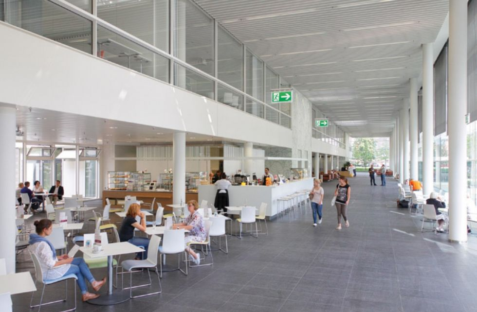 Prof. - Ruediger Krauspe - Dusseldorf University Hospital