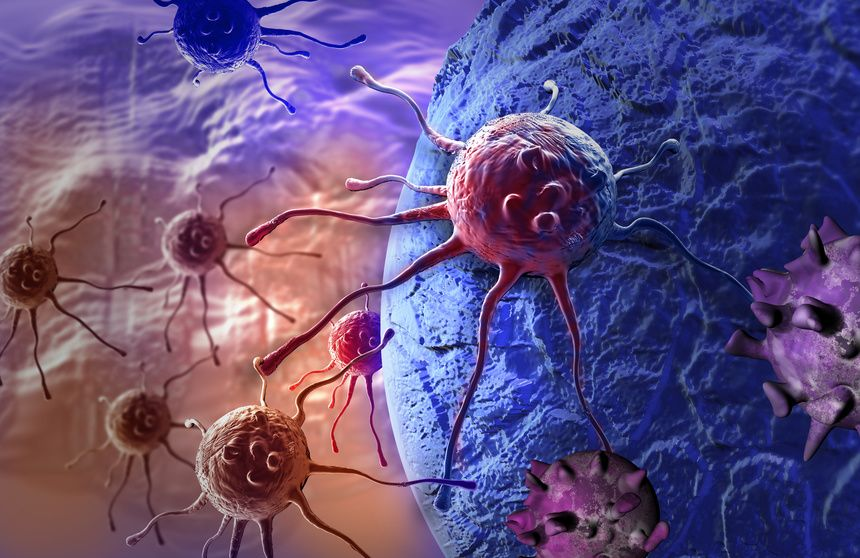 Cencer cells. Cancer is treated by the medical field Oncology