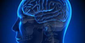 عملية الورم الدماغي