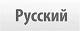 Arztpräsentation russisch